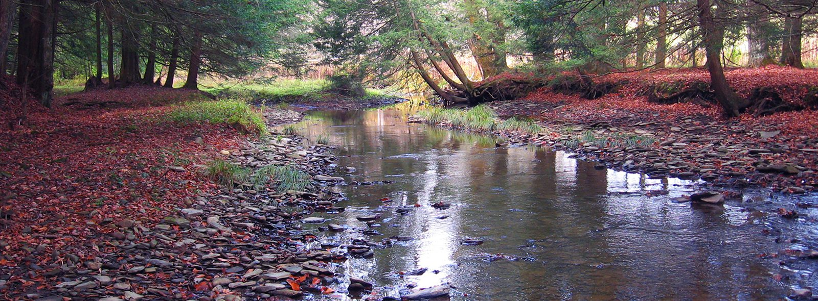 Culver Creek